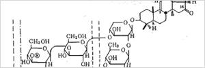 抗真菌成分「ホロトキシン」って?のイメージ